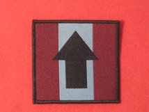 DROP ZONE BADGE THE PATHFINDERS TRF BADGE