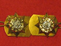 PRINCE OF WALES OWN YORKSHIRE REGIMENT MILITARY COLLAR BADGES