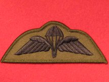 PARA WINGS SUBDUED GREEN BADGE