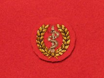 MESS DRESS MEDIC GOLD ON RED BADGE